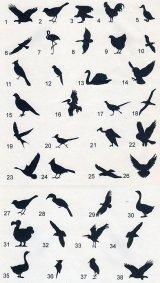 鳥のワンポイントシルエット