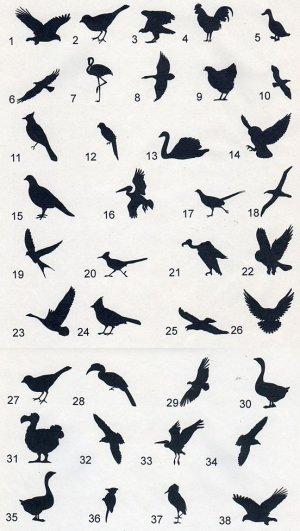 画像1: 鳥のワンポイントシルエット